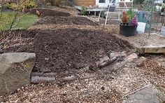 Hugelkultur is all the rage right now. This permaculture method of raised bed building is supposed to reduce irrigation needs and provide long term fertility to plants ...