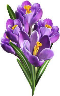 Illustration Blume, Image File Formats, Arte Floral, Paint Designs, Spring Flowers, Cut Flowers, Watercolor Flowers, Art Images, Flower Art