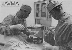 Veterinary care of a dog during hostilities in Vietnam. https://www.avma.org/News/JAVMANews/Pages/151001h.aspx?utm_source=pinterest&utm_medium=socmed&utm_campaign=vethistory