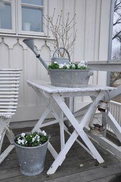 zinken teilen en emmers vullen met witte bloeiers, zoals mini winterviolen