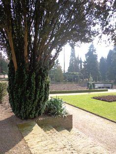 A walk in the park, Wageningen