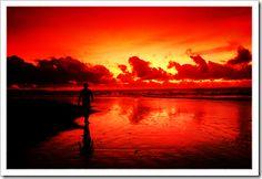 warme kleuren - De rode kleuren op deze foto. Laten zien hoe een foto van de natuur een warme uitstalling kan geven. Met warme kleuren!