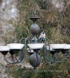 Repurposed brass chandelier bird feeder or bath