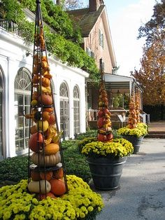 Variety of pumpkins and gourds in topiary cage.