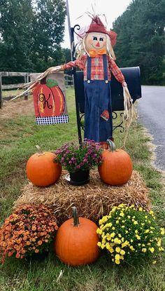 Pumpkin, Vegetables, Halloween, Fall, Autumn, Pumpkins, Fall Season, Vegetable Recipes, Squash