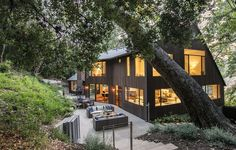 Hillside residence in Los Feliz surrounded by mature trees