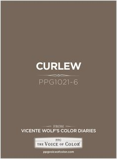 Curlew PPG1021-6 a Vicente Wolf Inspired Color as a part of the Vicente Wolf Collection by PPG Voice of Color See more about this paint color at: http://www.ppgvoiceofcolor.com/digital-color/paint-colors/curlew-ppg1021-6