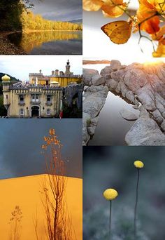 Gray & Yellow [Friday Flickr Photo Collage] | Flickr - Photo Sharing!