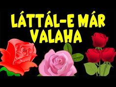 Láttál-e már valaha + 10 magyar gyerekdalok | Gyűjtemény | Rajzfilm gyerekeknek - YouTube Baby Songs, Marvel, Flowers, Plants, Decor Ideas, Youtube, Flora, Planters, Royal Icing Flowers