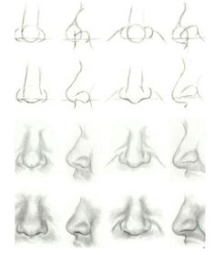 How to draw noses More