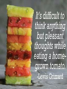 Tomatoes! Seriously!