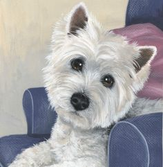 """Westie Puppy """"This Is My Chair """" Limited Edition Print by Sue Barratt"""