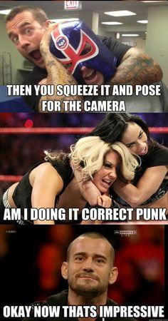 AJ Lee and CM Punk