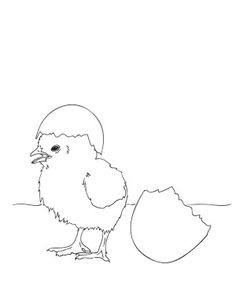 Easter coloring page baby chick peep, printable at