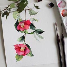 계절엔 어울리지않지만, 동백이 보고싶던..🙂 #동백꽃  비가 온뒤라 모든 색감이 진득하게보이네요☺️#아띠스띠꼬2 #삼원특수지 #삼원페이퍼 #아트스폰서쉽#samwonpaper #camellia#동백#꽃그림#꽃수채화#wip Botanical Art, Watercolor Paintings, Watercolours, Art Drawings, Drawing Art, Flower Art, Coloring Pages, Greeting Cards, Illustration