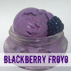 Homemade Blackberry Froyo - Purple Frozen Yogurt ~ WonkyWonderful.com