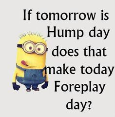 Oh, it's hump day! Funny Hump day sayings, quotes and cartoons with cards & wallpapers for everybody. Hump Day Quotes, Hump Day Humor, Tuesday Quotes, Sex Quotes, Drunk Quotes, Monday Humor, Sarcastic Quotes, Humor Quotes, Morning Quotes