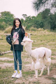 Asian Beauty, Actresses, Animals, Girls, Korean Idols, Photos, Female Actresses, Animais, Animales