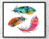 Colorful feathers.