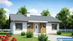 Modern Project One-storey House with Gable Roof