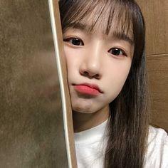 Kpop Girl Groups, Kpop Girls, Secret Song, Yoon Sun Young, Forever Girl, Sakura Miyawaki, Cute Hamsters, Japanese Girl Group, Fandom