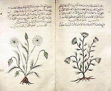 De Materia Medica (Dioscorides) - Wikipedia, the free encyclopedia