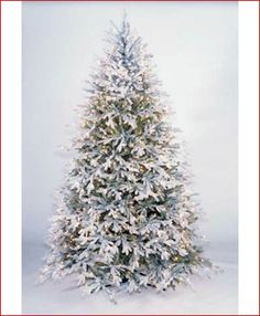 """How to """"Flock"""" a Christmas Tree: http://www.youtube.com/watch?v=TrfEGOBVNlk&feature=related or http://www.youtube.com/watch?v=HC1uJoJKm8Q"""