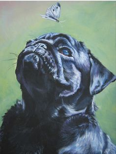 black Pug art print CANVAS