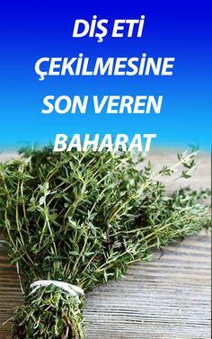 Medicinal Plants, Herbalism, Medicine, Herbs, Healthy, Life, Herbal Medicine, Herb, Healing Herbs