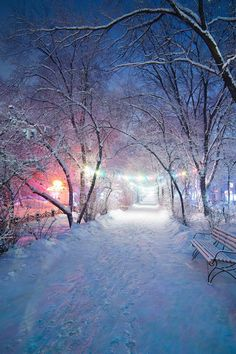Beautiful winter lights