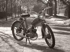 Az öreg Komar (1967)