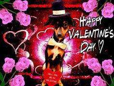 Happy Valentine's Day from the Health Extension Pet Care family!