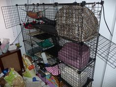 A Home Made Ferret Cage | Ferret Tips!