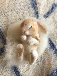 Haas Konijn/slapen Baby/Baby Pasgeboren Haas/naald vilten Gift | Etsy Felt Owls, Felt Bunny, Felt Animals, Wool Needle Felting, Needle Felted Animals, Felted Wool, Chinchillas, Bordado Popular, Rabbit Sculpture