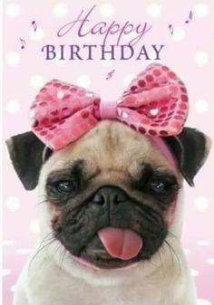 Die 64 Besten Bilder Von Geburtstag Geburtstag Geburtstag