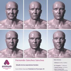 Expresiones faciales Vista frontal