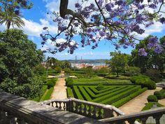Jardim Botânico da Ajuda (Belém, Portugal)