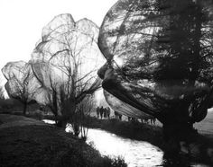 Wolfgang Volz - Christo and Jeanne-Claude, Wrapped Trees,  Fondation Beyeler and Berower Park, Riehen, Switzerland 1997-1998