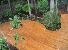Curved Deck - asian - porch - other metro - TC Williams, LLC
