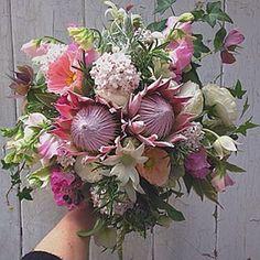 #kingprotea #flannelflower #sweetpea #posy #bouquet #weddingflowers #wildebunchflorist #hurstbridgeflorist