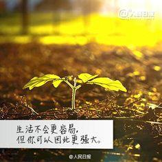 人民日报 6/5 07:00 来自人民日报微博 【写给渴望变得更好的你】人生,就是一场自己与自己的较量:让积极打败消极,让快乐打败忧郁,让勤奋打败懒惰,让坚强打败脆弱。在每一个充满希望的清晨,告诉自己:努力,就总能遇见更好的自己。