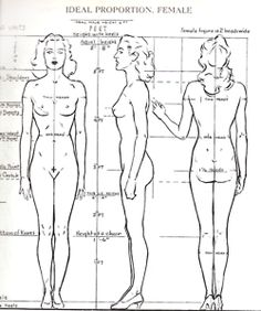 Drawing Female Body Proportions <b>figure drawing</b> - an introduction - <b>drawing</b> factory Figure Drawing Female, Drawing Female Body, Figure Drawing Reference, Anatomy Reference, Proportions Du Corps, Body Proportions, Andrew Loomis, Anatomy Drawing, Human Anatomy