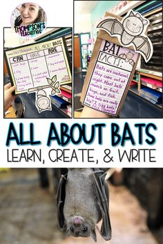 Get your kids up and moving to discover all about bats with this- Learn, Create, and Write project. This bat project pack includes:-Bat fun fact cards-Fully written lesson plan (print and go!) Quick and easy for sub plans too!-Bat book list and links-Video links for bat discovery and learning-Bat project templates-Can, Have, Are charts in a variety of formats-Bat writing prompts All About Bats, Bat Facts, Bat Craft, Kids Up, Spring Activities, Science Lessons, Dose, Mammals, Blog
