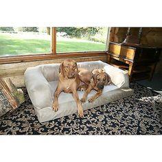 Dog Furniture Free Shipping