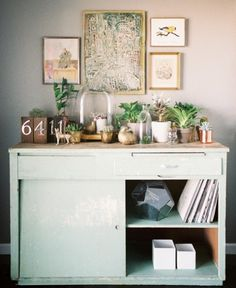 HomeGoods | Decorating with Indoor Plants