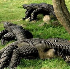 Rather than sending old tires to landfill, they could always be turned into these ....These would be so funny to have in the yard when it floods every other week. Haha!