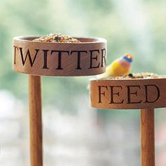 Encourage birds to get social in your garden with this cute Twitter Feed bird feeder.