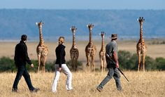 Walking safari at Mara Plains Camp, Kenya. Rifle 4 protection, not hunting - ATR ~~~`