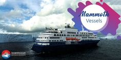 Find large for maximum passenger accomodation, with Norshipsale. Norway, Cruise, Travel, Viajes, Cruises, Destinations, Traveling, Trips