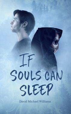 If Souls Can Sleep by David Michael Williams